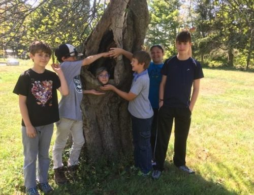 Activity Day and Open House with CELC Middle School and Bushy Hill Nature Center!